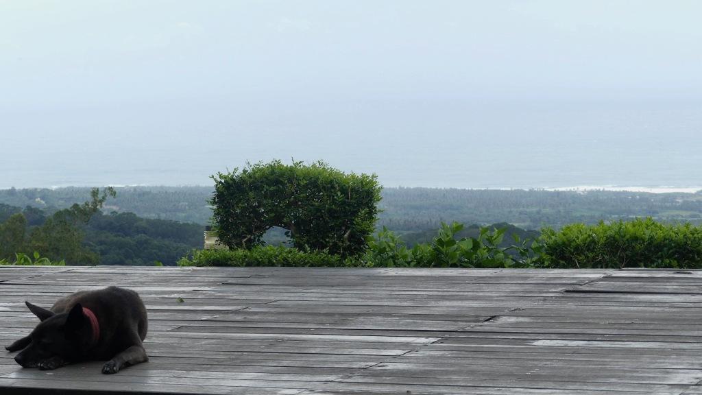 Moonlight Inn view - a little cloudy today